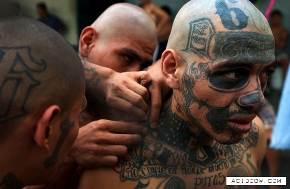 Members of Mara Salvatrucha, since 2008 many new mara members have no more tatoos to difficult the work of the police