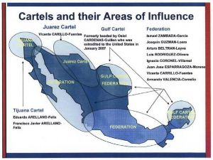 Mexican drug cartels 2008