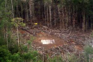 FARC camp recently bombed with surgical precision by the Air Force.