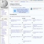 Information Categories of Bolivia in Wikipedia - click here