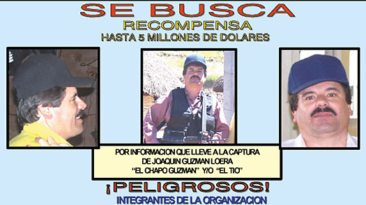 cartel de sinaloa. the Sinaloa cartel