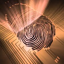 Security America, The Americas Post: biometric software.