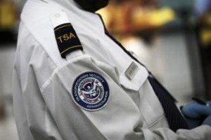 TSA is criticized by israeli expert.